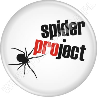 p043-spider-project.jpg